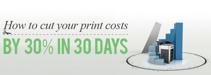cut costs by 30 percent in 30 days landing page